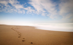 Footprints In The Sand Wallpapers (1)